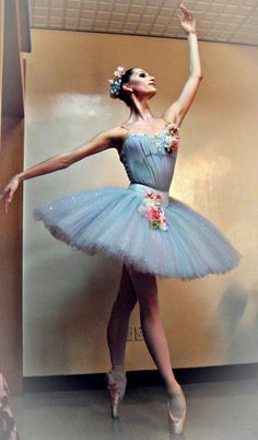 pointe or ballet costume