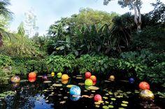 Dale Chihuly, Niijima Floats (2014).  Photo: Fairchild Tropical Botanical Garden.