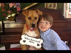 Adopted Rescue Dog Changes Autistic Boy's Entire World.