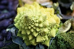 Spirals in Nature - The Smart Happy Project Romanesco Broccoli, Spirals In Nature, Fibonacci Spiral, Eat Smart, Plant Growth, Edible Art, Edible Garden, Flower Of Life, Sacred Geometry