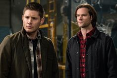 """BuddyTV Slideshow 
