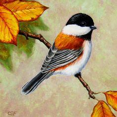 cuadros-decorativos-pinturas-de-aves