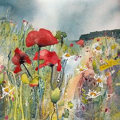 Munlochy Poppies