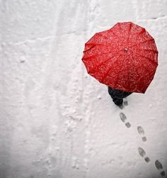 An umbrella that may actually have you wishing for rain (or snow).