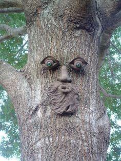 Genuine Tree Peeple Whistlin' Pete Tree Face Genuine Tree Peeple http://www.amazon.com/dp/B002S0RLDE/ref=cm_sw_r_pi_dp_mOkGvb07CS20A