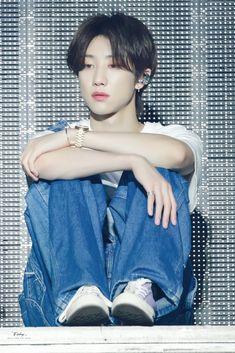 Woozi, Wonwoo, Jeonghan, Seungkwan, Seventeen Minghao, Hoshi Seventeen, Hip Hop, Vernon, Seventeen Memes