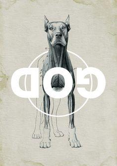 Dog illustration #art #poster #graphic #dog #text