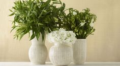 Shop AERIN Amelie Sphere  Vase at LuxDeco. Discover luxury collections from the world's leading home decor brands. Free UK Delivery.