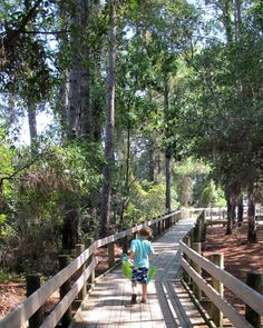 Driessen Beach Park (Hilton Head, SC): Address, Attraction Reviews - TripAdvisor Parents mag online says: Be sure to check out Driessen Beach's wooden boardwalk because it actually takes you over a tidal marsh and sand dunes, so it's home to the most creatures.