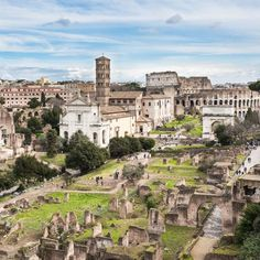 This special English live guided tour takes you not just to the first and also second floors of the Roman Colosseum, however high right into the Belvedere of the Colosseum. Rome Guide, Romulus And Remus, Palatine Hill, Rome Tours, Rome City, Roman Forum, Piazza Navona, City Pass, Tour Tickets