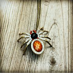 "The Arachnid vintage-style necklace - NWOT Only for special girls like myself who love the creepy crawly cuties! Vintage-style, spider fashion necklace, long clasp free chain, 28"" approx. length. Pendant is 1.75"" x 2.25"". *all pictures are my personal photos of the actual item for sale* The Aurora Co. Jewelry Necklaces"