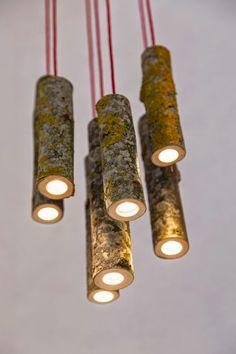 DIY Lampe - kreieren Sie Ihr eigenes leuchtendes Holzstück - Abd My Site Tree Branch Decor, Tree Branches, Branch Chandelier, Driftwood Chandelier, Tree Logs, Chandelier Ideas, Diy Luminaire, Creation Deco, Wooden Lamp