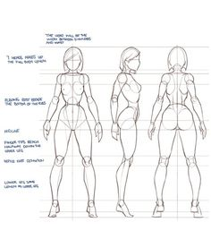 idraw.co — Amazing proportion tutorial by independent artist...