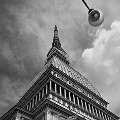 Torino - Horizontal Lines