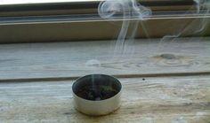 Un rimedio semplicissimo e che funziona davvero! Il caffè. Vespe e api rappresentano un problema nella stagione estiva, quando per condizioni climatiche fa