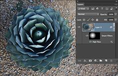 All about Masks in Photoshop   Veerle's blog 3.0 -- Looks like a good resource, since using masks in photoshop seems to always elude me.