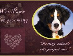 Pet groomer needs advertising banner. Logos created too.