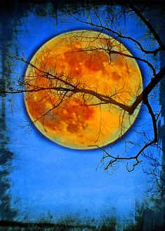 Harvest Moon ACEO art trading card metallic by LDphotography, $6.00