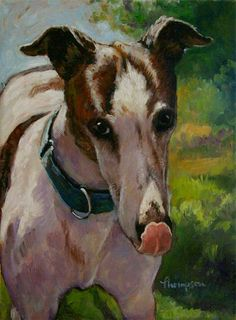 "~ Biscuit the Greyhound.   Painted from a snapshot, July 2012; 12"" x 9,"" oil on canvas.   ARTIST: Tracie Thompson~"