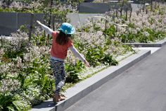 Pukeahu National War Memorial Park by Wraight Athfield Landscape + Architecture « Landscape Architecture Platform Memorial Park, Contemporary Landscape, Plant Design, Landscape Architecture, Platform, Memories, Play, Planting, Greenery