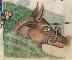 Detail from The Luttrell Psalter, British Library Add MS 42130 (medieval manuscript,1325-1340), f187r
