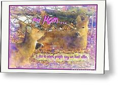 Deer Mother And Child Fun Poster Greeting Card by Shelly Weingart