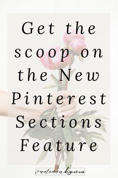 Pinterest sections are a new feature and way to organize your boards on Pinterest, but do they improve your overall SEO on Pinterest in search? I'm sharing some strategic ways you can use sections on Pinterest. #pinteresttips #SEO #pinterestkeywords #pinterestmarketing #socialmediamarketing