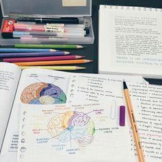 Imagen de notes, study, and school
