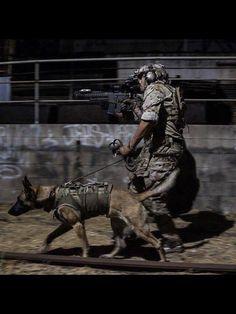 Tactical K9