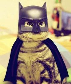 """""""I am the night.""""Share This on Facebook?Image via Imgur - Mom.me"""