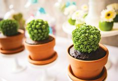 Love these cactus cupcakes!! How about a big cake that looks like many different cactus/succulents?