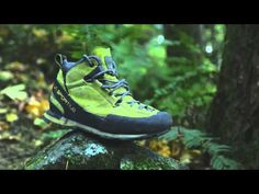 WILD Tips from the Trail: Hiking Footwear - REI Blog