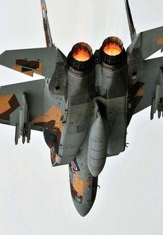 JASDF F-15DJ Aggressor squadron