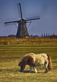 Windmills, Kinderdijk, The Netherlands