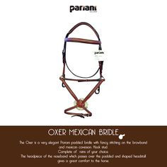 Oxer mexican #bridle #lovepariani
