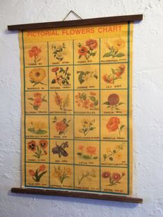 Vintage Pictorial Flowers Chart from India by ObjetLuv on Etsy