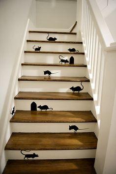 les souris dans l'escalier...