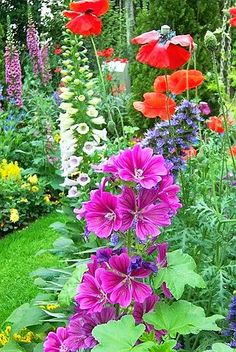 ✯ Summer Flowers. I like the mix of poppies and foxgloves.