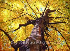 Golden tree watercolor painting print by Cathy Hillegas, 12x16, watercolor tree, gold, yellow, orange, blue, purple, brown, maple tree