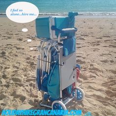 So lonely on the beach! Tell him HOLA! Rental Beach Cart in Beach Package.