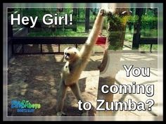 Zumba tonight!!! Work it!