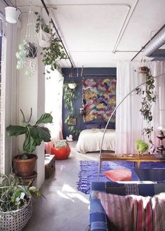 Interior and Designs , Simple Small Apartment Decorating Ideas : Plants Small Apartment Decorating Ideas
