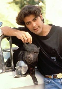 George Clooney's longest relationship was with his Vietnamese black bristled potbellied pig named Max, who lived with Clooney for 18 years. Max weighed in at about 300 pounds. Unusual Animals, Cute Animals, Unusual Pets, George Clooney Images, The Great, Mini Pigs, Odd Couples, Pet Pigs, Little Pigs