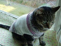 Cat or Dog Sweater Hand Knit LuLu Medium/Lrg JANUARY by jenya2, $22.50
