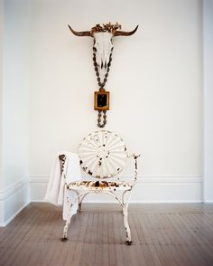 Hallway Photo - A white metal patio chair below a cow skull