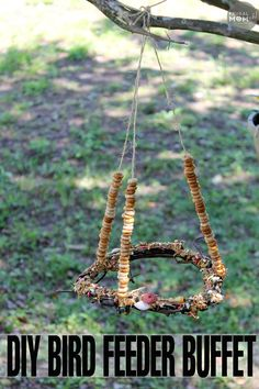 """This DIY Bird Feeder Buffet is a perfect kids craft for the summer or winter.  Just watch the birds flock and feast on the """"buffet""""!"""