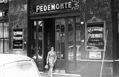 Broadway Shows, Vintage, Lions Photos, Be Nice, Argentina, Vintage Comics