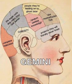 Astrology Pisces, Zodiac Signs Pisces, Pisces Quotes, Zodiac Memes, Zodiac Star Signs, My Zodiac Sign, Zodiac Facts, Chinese Astrology, Virgo Memes