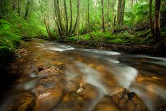 A list of locations of all around Tasmania for the photographer by the photographer. What A Wonderful World, Tasmania, Wonders Of The World, Country Roads, Earth, Graphic Design, Waterfalls, Places, Landscapes