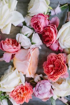 // pink roses